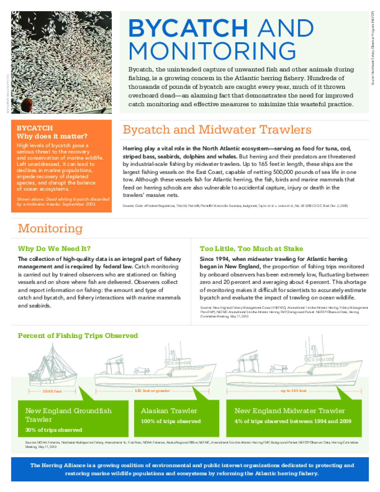 Bycatch and Monitoring