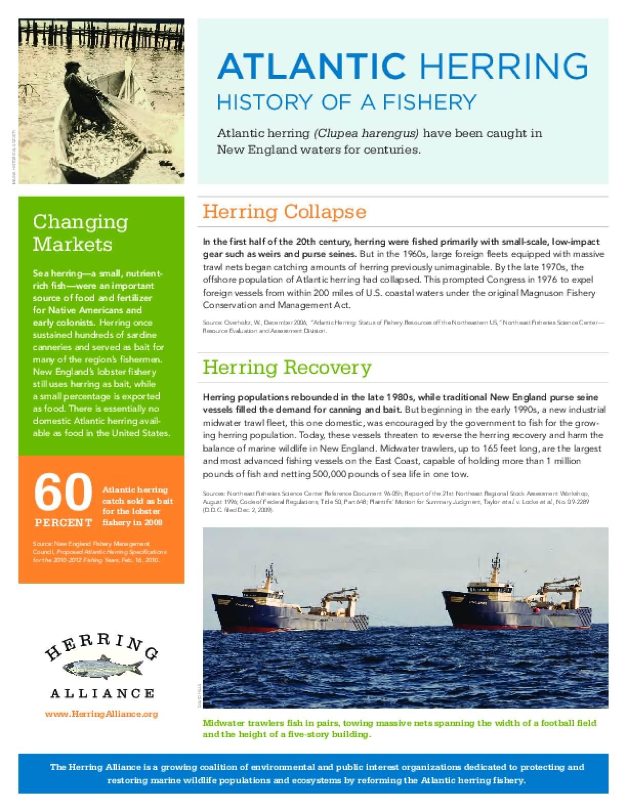 Atlantic Herring: History of a Fishery