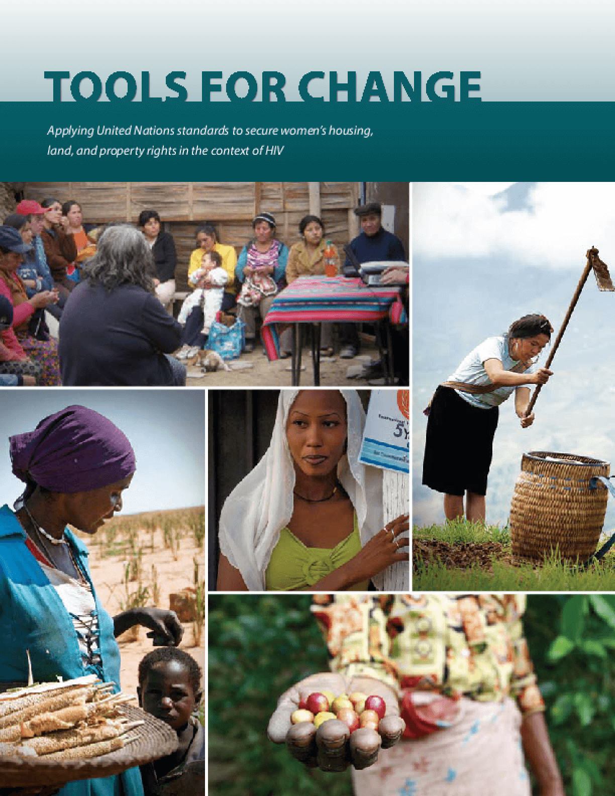 Tools for Change: Applying United Nations Standards to Secure Women's Housing, Land, and Property Rights in the Context of HIV