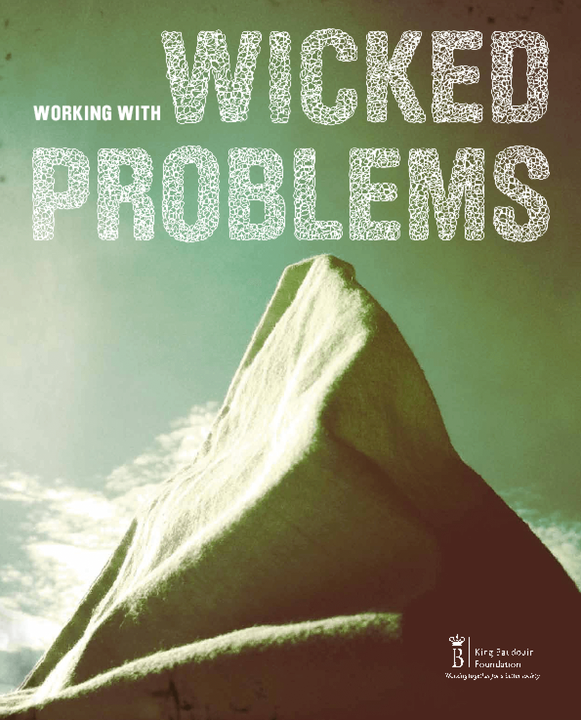 Working with Wicked Problems