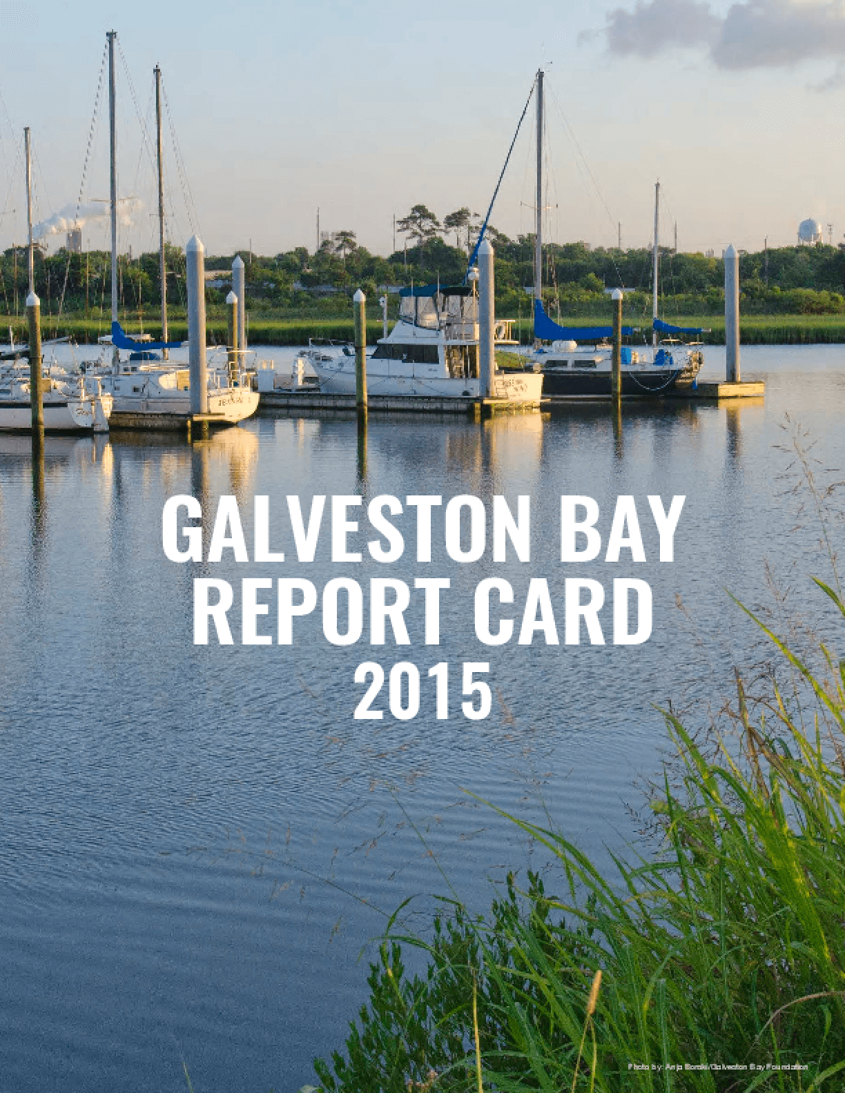 Galveston Bay Report Card 2015