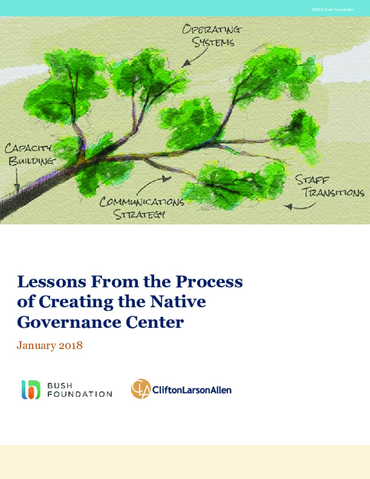 Lessons from the Process of Creating the Native Governance Center