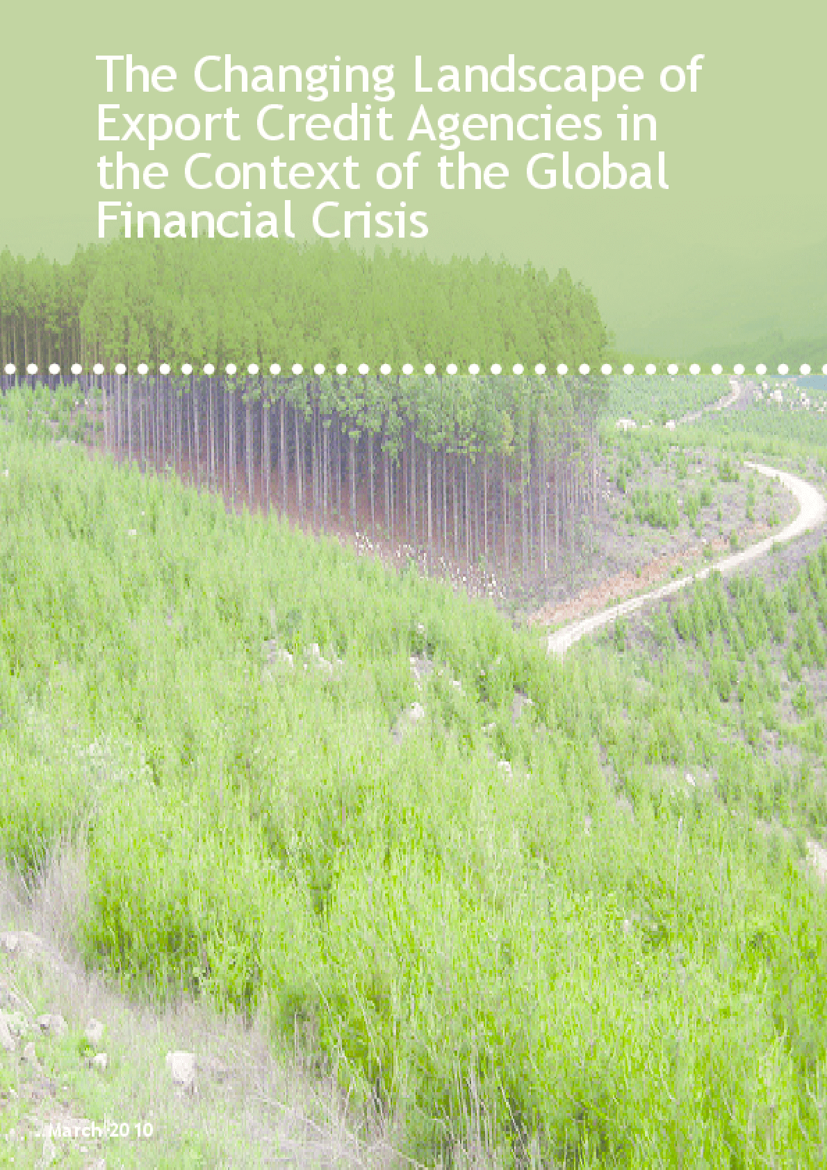 The Changing Landscape of Export Credit Agencies in the Context of the Global Financial Crisis